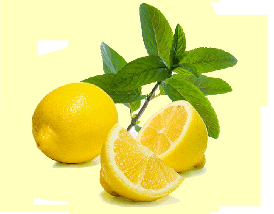 Lemon Exporter
