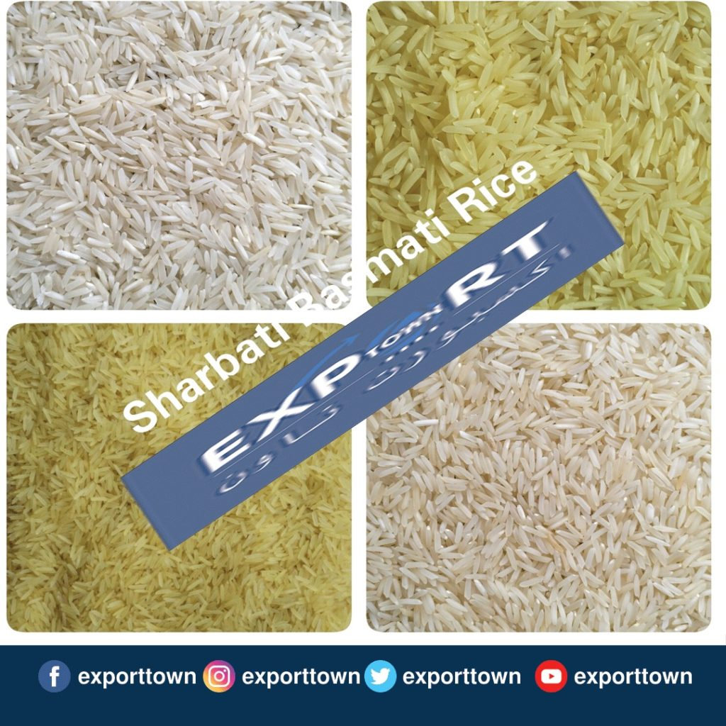 Sharbati Basmati Rice Price